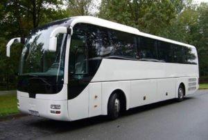 man lions coach r07 9 300x203 - Autobuses