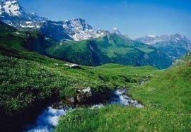 Nature Georgia - Georgia
