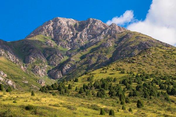 """aksu jabagly1 - Conservation Park """"Aksu-Zhabagly"""""""