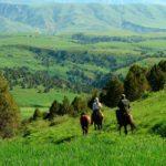 """aksu jabagly2 150x150 - Conservation Park """"Aksu-Zhabagly"""