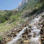 """aksu jabagly7 150x150 - Conservation Park """"Aksu-Zhabagly"""