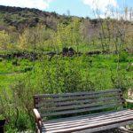 """arzny12 150x150 - Resort """"Arzni"""