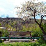 """arzny13 150x150 - Resort """"Arzni"""