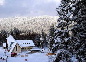 "bakuriani4 300x216 - Ski resort ""Bakuriani"""