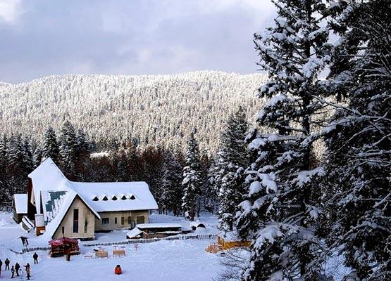 "bakuriani4 - Ski resort ""Bakuriani"""