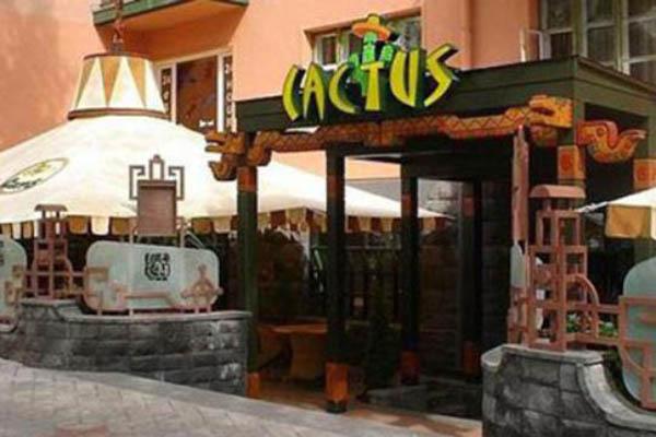 kaktus5 - Кактус
