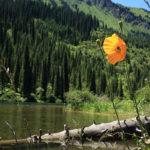kolsar3 150x150 - Kolsai lakes