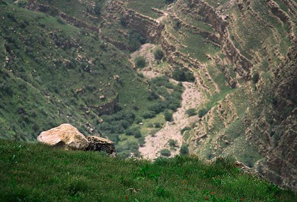 Image result for Kopetdag State Natural Reserve