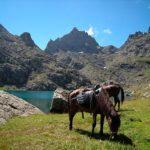 megreliya10 150x150 - Travel across areas of Georgia: Samegrelo