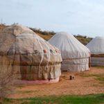 safari3 150x150 - YURTOV CAMP SAFARI