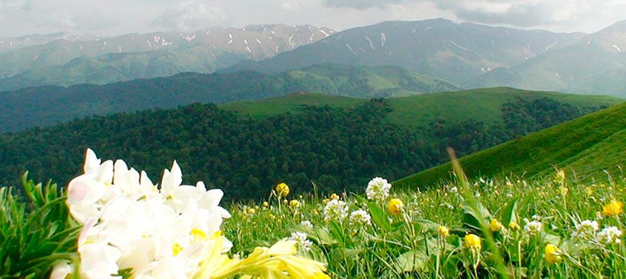 Азербайджана - Треккинговая программа 11дн/10н (Горный)