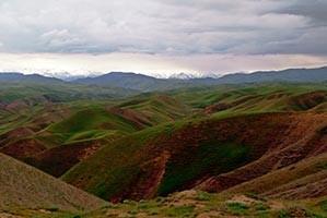 "zapovednik2 - Eco-tour ""The unique nature of Uzbekistan"""