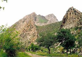 "zapovednik3 - Eco-tour ""The unique nature of Uzbekistan"""
