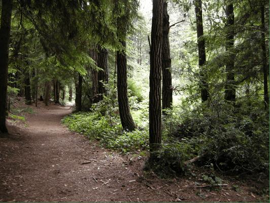 природные парки