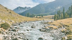 14 300x169 - Природные заповедники и парки