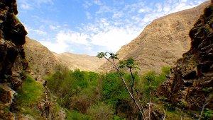 Природные заповедники и парки