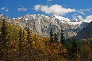 Туры в Киргизию. Национальный парк Ала-Арча