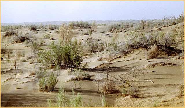 5 - DESERTO DEL KARAKUM
