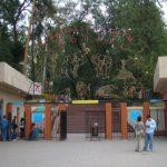 almaty zoo8 150x150 - Алматинский зоопарк
