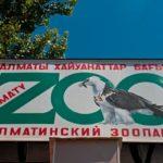 almaty zoo9 150x150 - Алматинский зоопарк