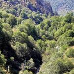 arslanbob6 150x150 - Национальный природный заповедник Арсланбоб