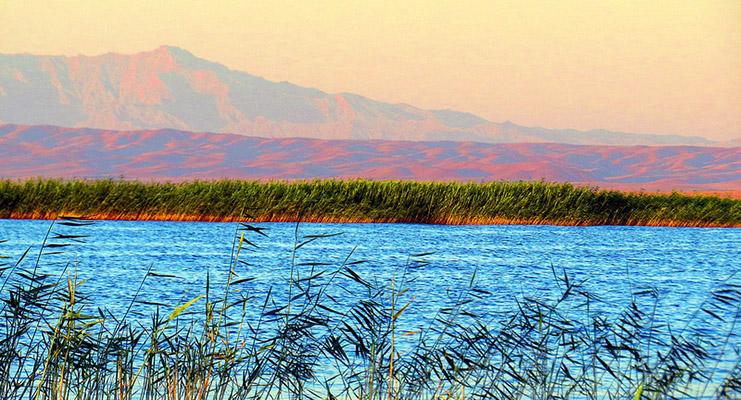 айдаркуль красивое озеро фото нужно признать