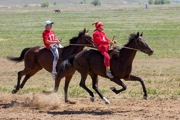 bayga2 - Национальные казахские скачки Аламан-байга