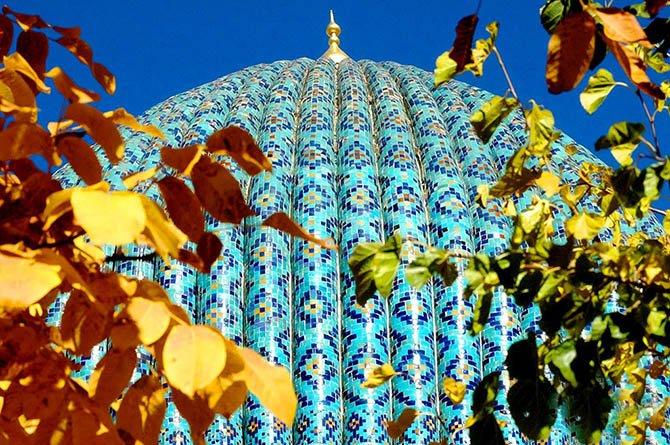 "ikebana - Тур ""Осенняя икебана"" Узбекистана"