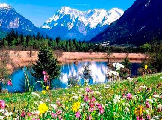priroda kipgizii1 - Особенности растительного и животного мира Киргизии