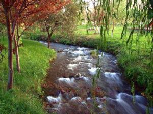 priroda turkmen6 300x224 - NATURAL BEAUTY OF TURKMENISTAN