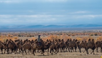 48 - Itinerary tour Discover the country of modern nomads