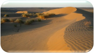 EXTREME PROGRAM TO THE HEART OF KARAKUM DESERT_02