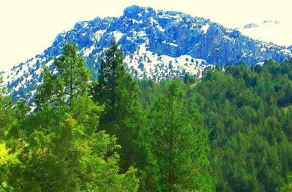 Горы Узбекистана. Зооминский заповедник