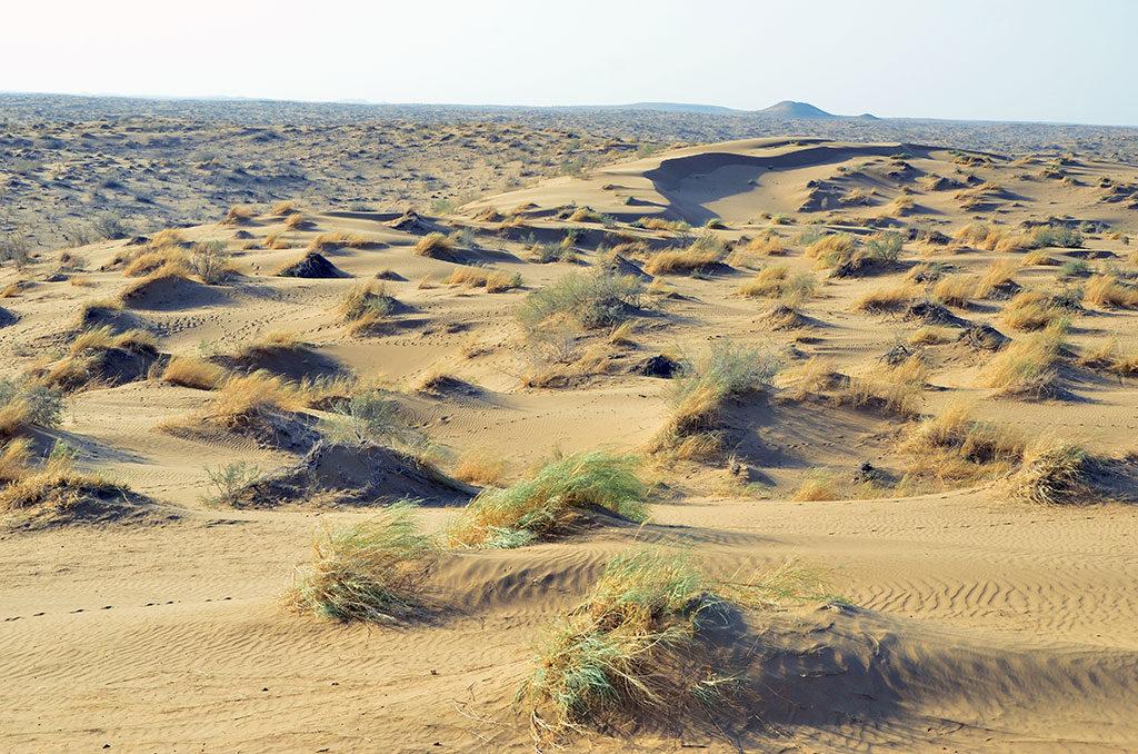 Пустыня Каракум. Блог. Тукрменистан